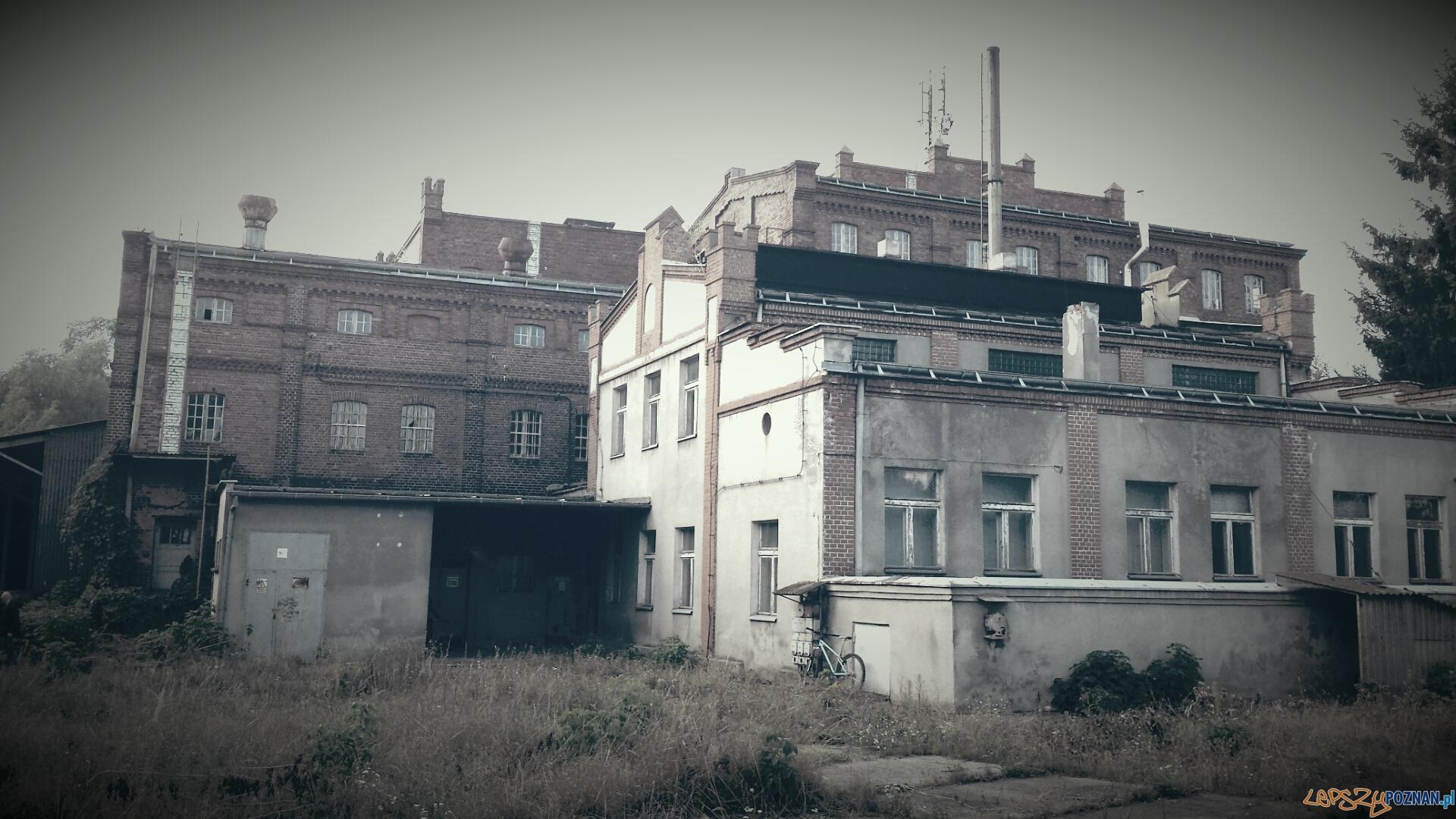 Młyn nad Cybiną  Foto: materiały informacyjne