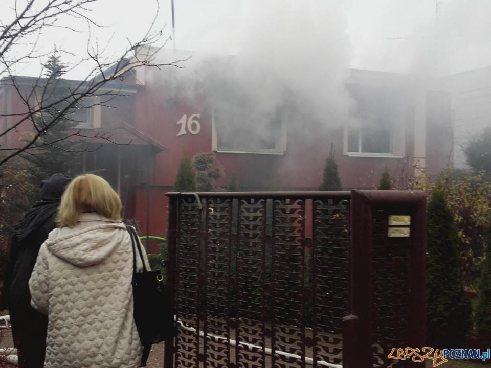Pożar domu w Rogalinku  Foto: Komenda Miejska Państwowej Straży Pożarnej w Poznaniu