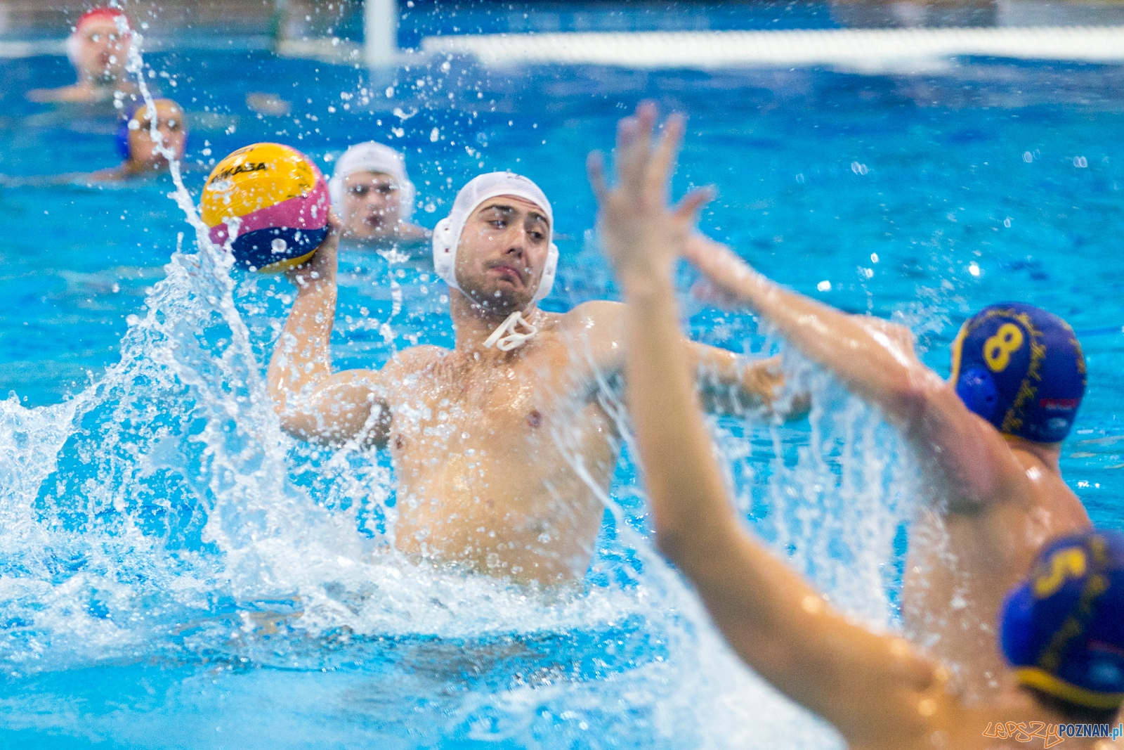 III Malta Waterpolo Cup - KS Waterpolo Poznań - ASV Wiedeń  Foto: lepszyPOZNAN.pl / Piotr Rychter