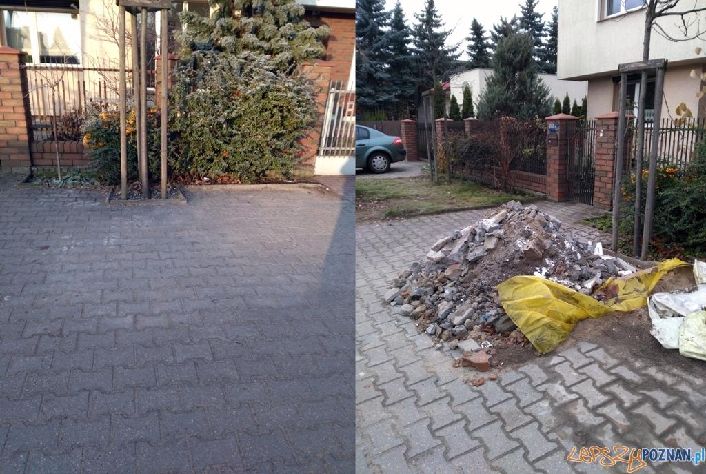Posprzątać, nim śnieg przykryje całą tę gemylę  Foto: Straż Miejska Poznania