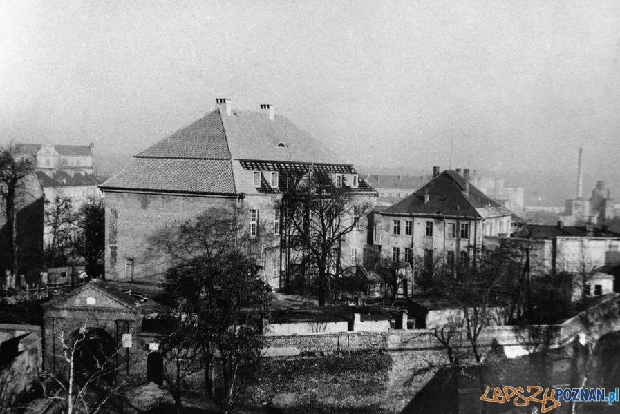 Wzgórze Przemysła - rok 1960  Foto: Muzeum Narodowe w Poznaniu