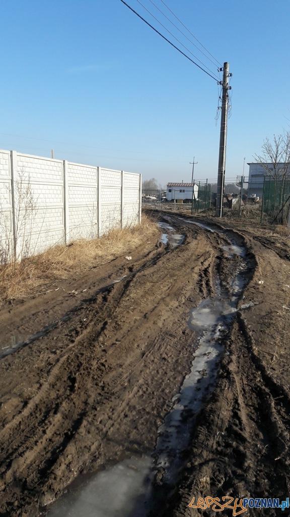 Ulica Podjarszki - zniszczona droga  Foto: Straż Miejska