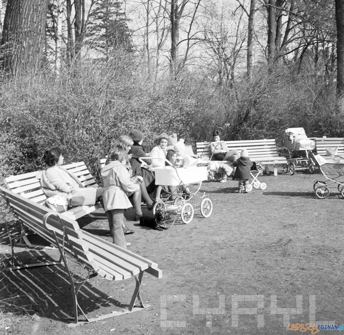 Park Sołacki - 20 marca 1974  Foto: Stanisław Wiktor / Cyryl