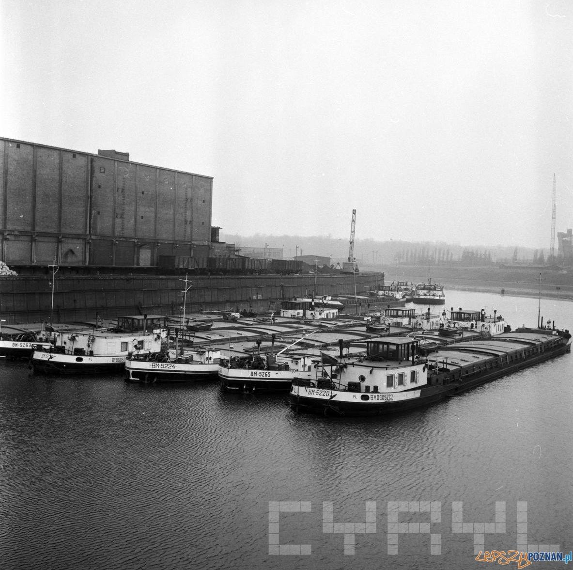 Port przy Szyperskiej - 16.03.1975  Foto: Stanisław Wiktor / Cyryl