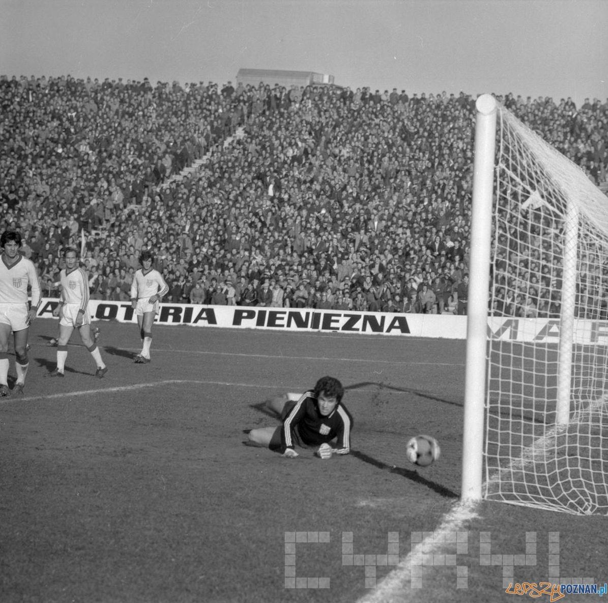 Stadion Szyca - mecz towarzyski Polska Grecja 5:2  Foto: Stanisław Wiktor / Cyryl