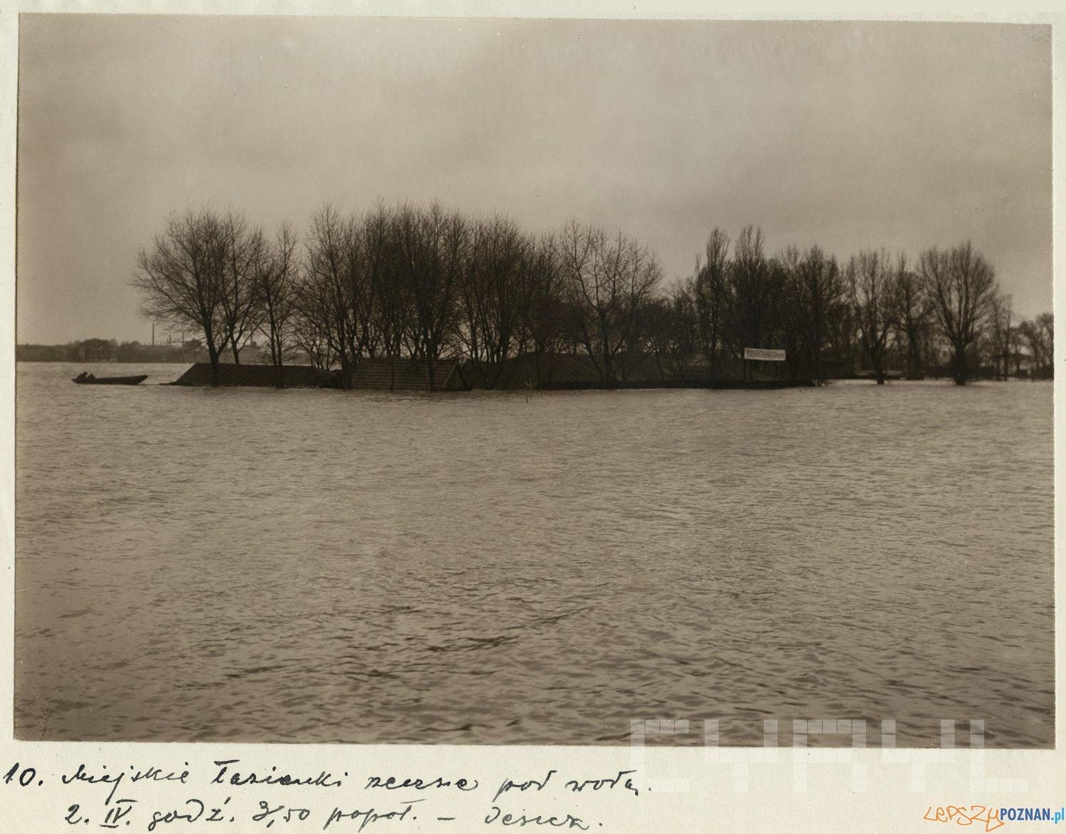 Łazienki Droga Dębińskiej zalane wodami Warty –  2.04.1924
