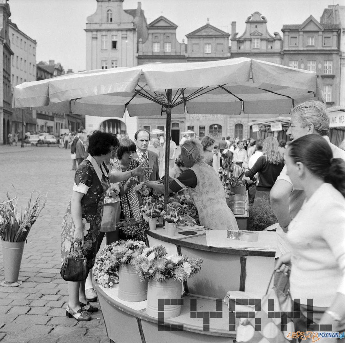 Stary Rynek kwiaciarnia 16.08.1975  Foto: Stanisław Wiktor / Cyryl