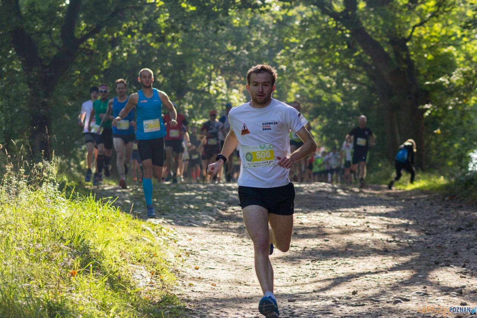 Forest Run  Foto: lepszyPOZNAN.pl / Ewelina Jaskowiak