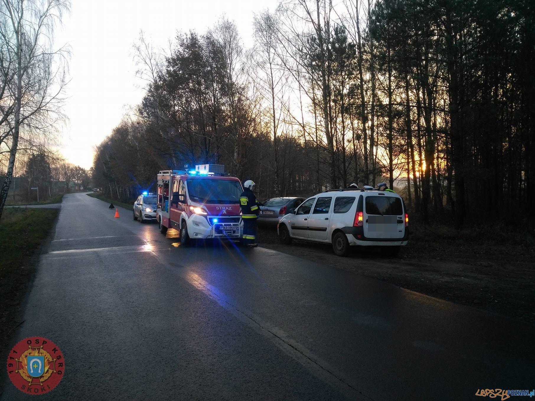 Potrzanowo - Samochód uderzył w drzewo  Foto: OSP Skoki