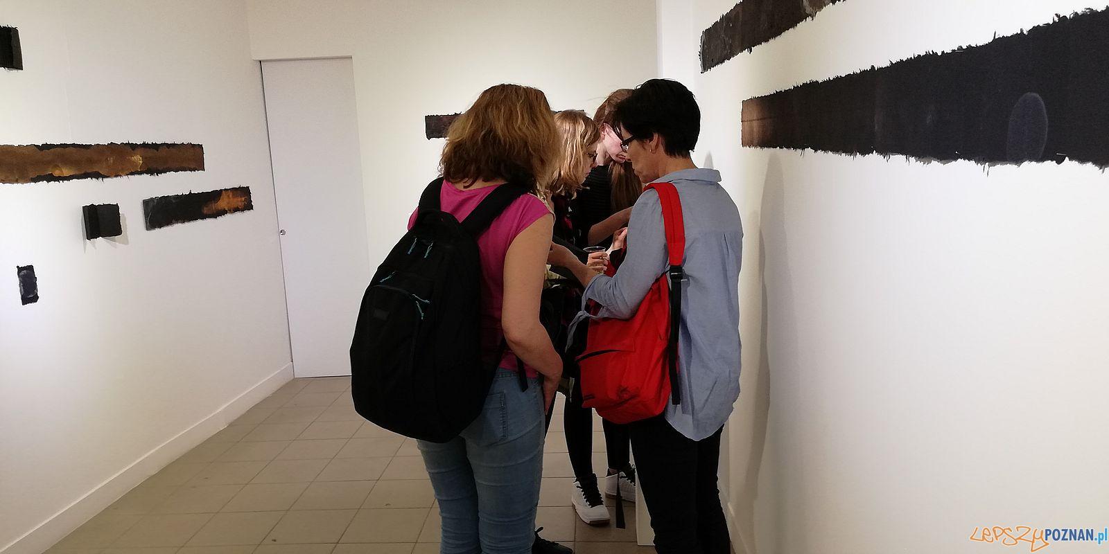 Żałobny dziennik - wystawa Barbary Mydlak w Galerii JAK  Foto: Tomasz Dworek