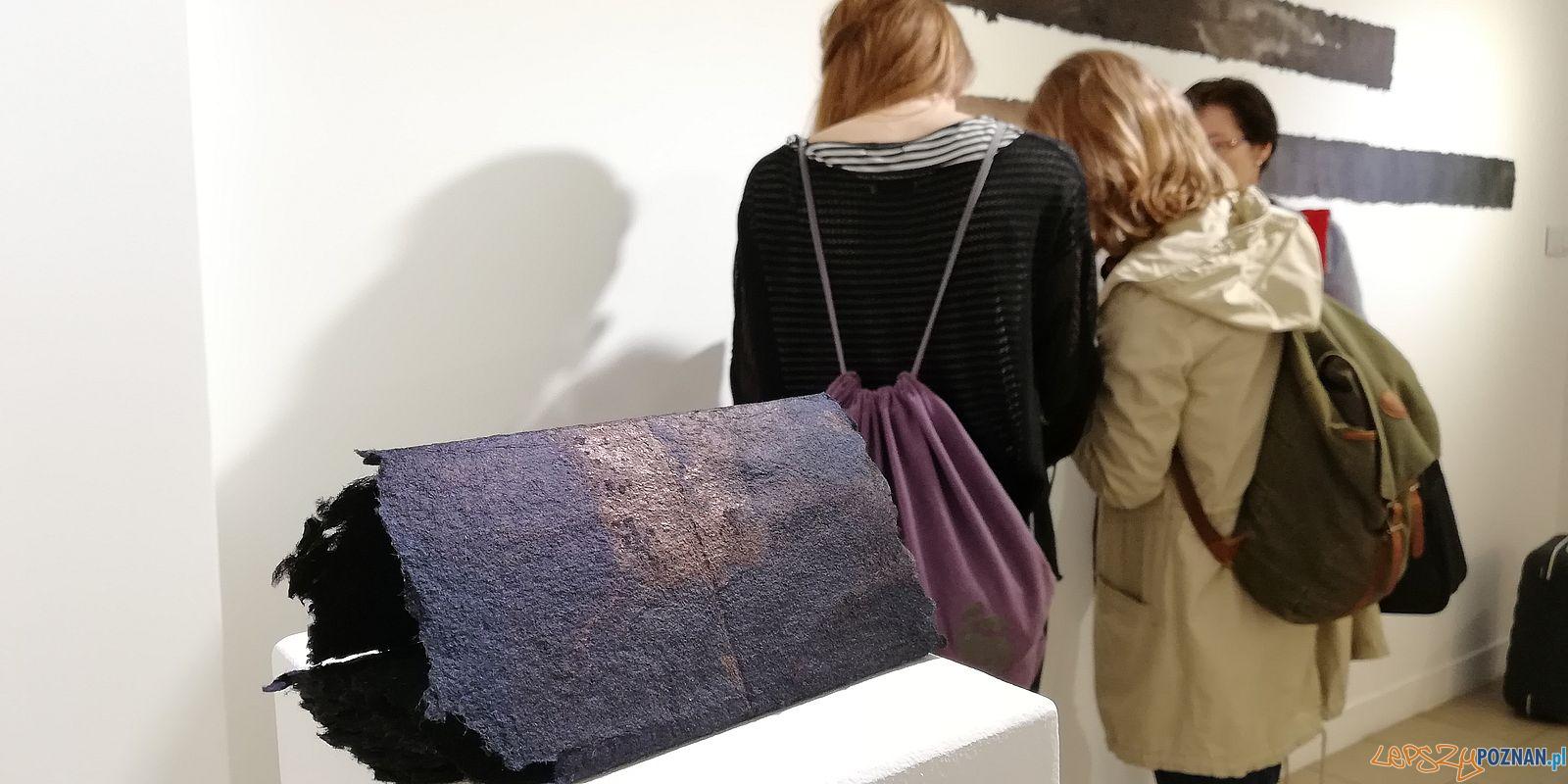 Żałobny dziennik - wystawa Barbary Mydlak w Galerii JAK  Foto: