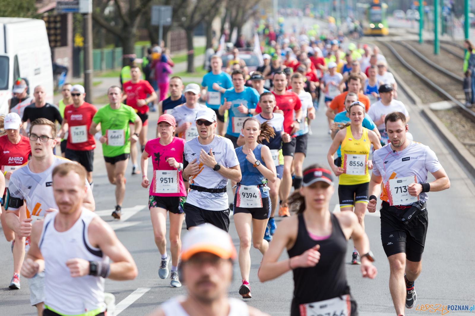 11. Poznań Półmaraton  Foto: lepszyPOZNAN.pl/Piotr Rychter