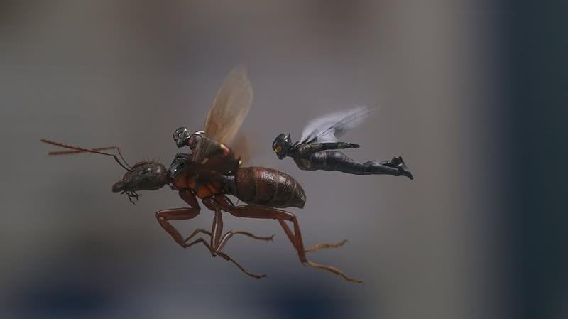 ANT-MAN i OSA  Foto: