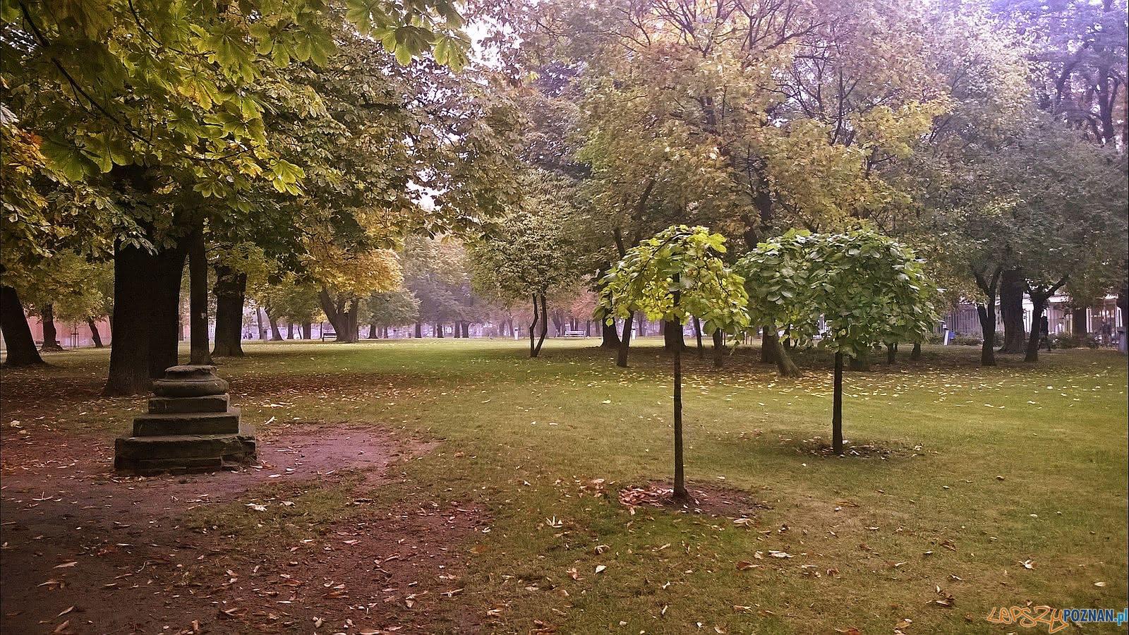 Park Stary Browar - im. Jana Henryka Dąbrowskiego  Foto: Tomasz Dworek