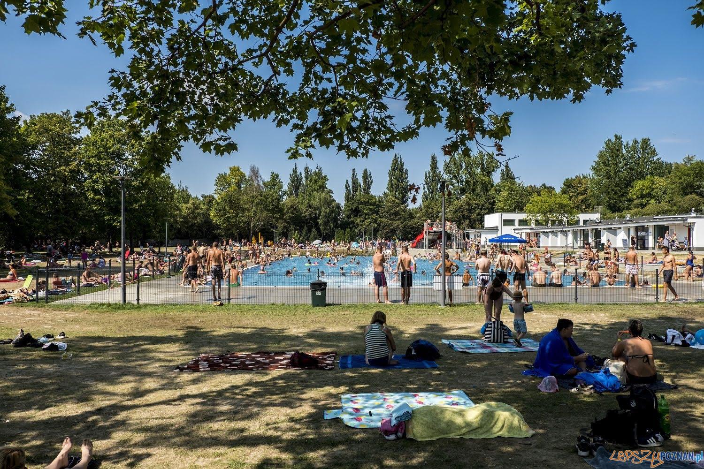 Basen w Parku Kasprowicza (3)  Foto: Adam Ciereszko / POSiR