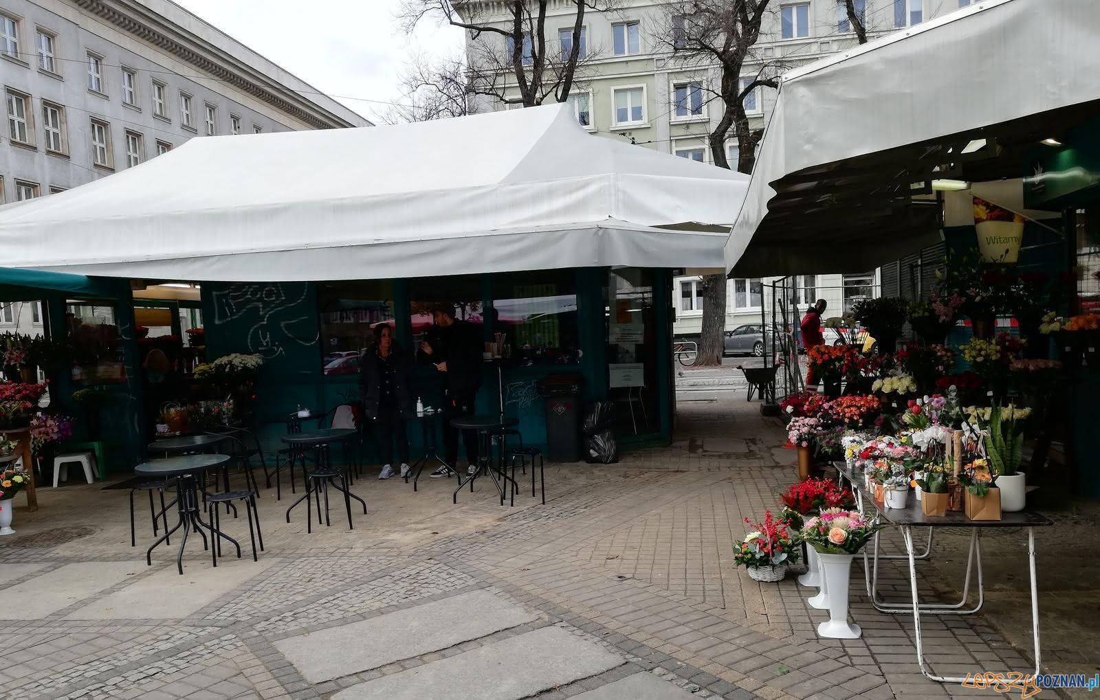 Pizzeria - Plac Wolności  Foto: T. Dworek