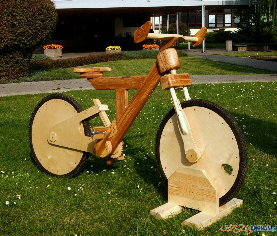 Rower z drewna -  Krzysztof Jagiełło (2015)  Foto: Uniwersytet Przyrodniczy - materiały prasowe