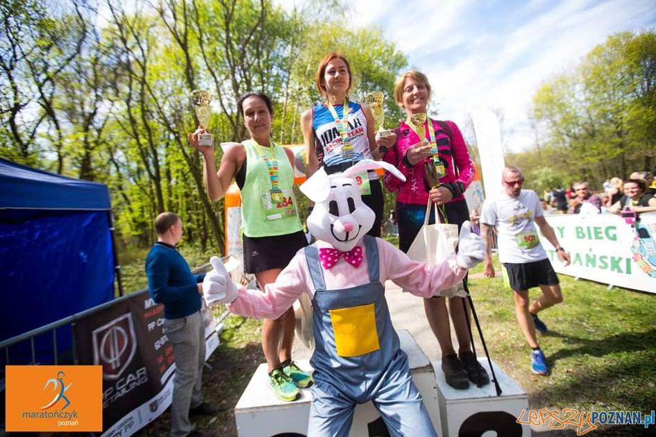 Bieg Zajączka Wielkanocnego  Foto: materiały prasowe