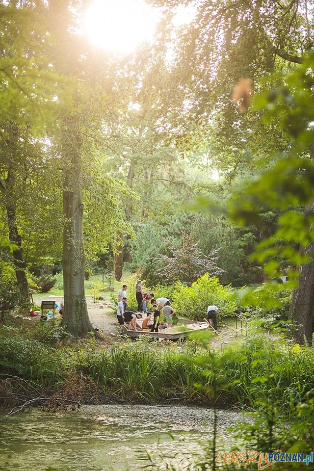 Ogród Dendrologiczny – Mood for Wood