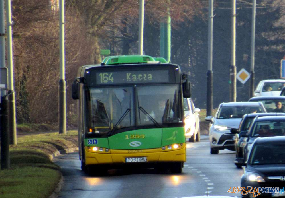 Autobus 164  Foto: ZTM
