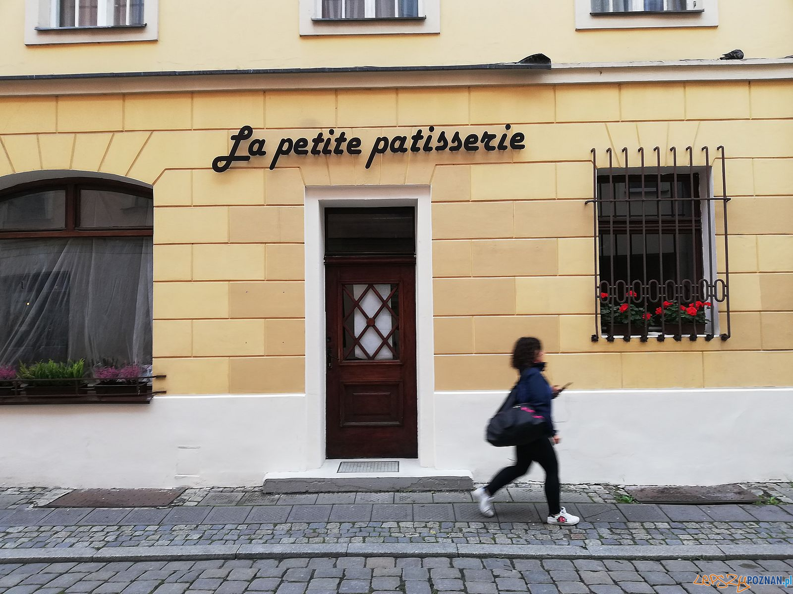 Le petite patisserie - Klasztorna / Wielka  Foto: Tomasz Dworek