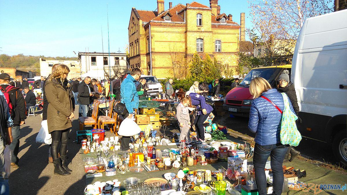 Stara Rzeźnia - pchli targ (4)  Foto: Tomasz Dworek / Rada Starego Miasta