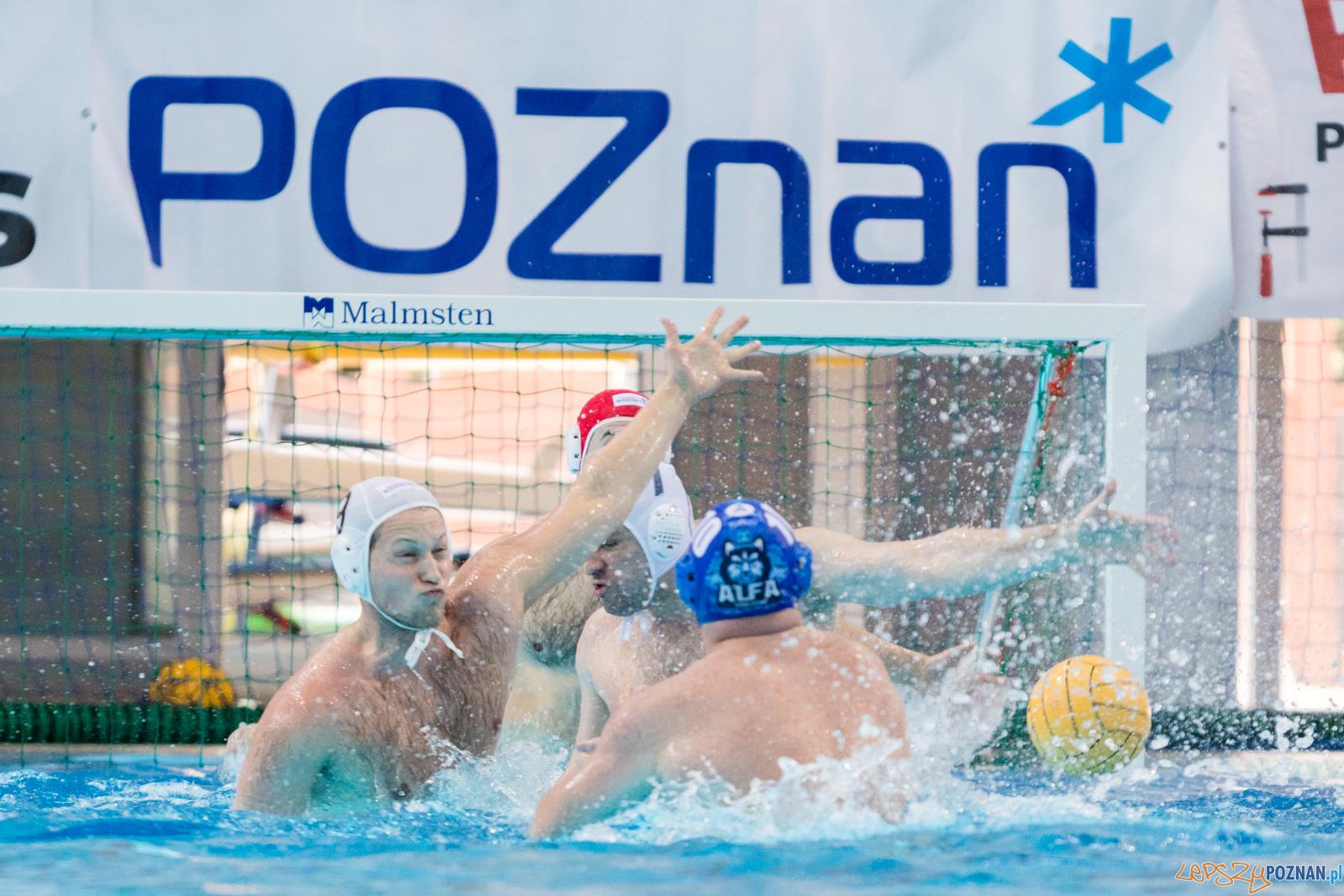 Box Logistics Waterpolo Poznań - Alfa Gorzów Wielkopolski  Foto: lepszyPOZNAN.pl/Piotr Rychter