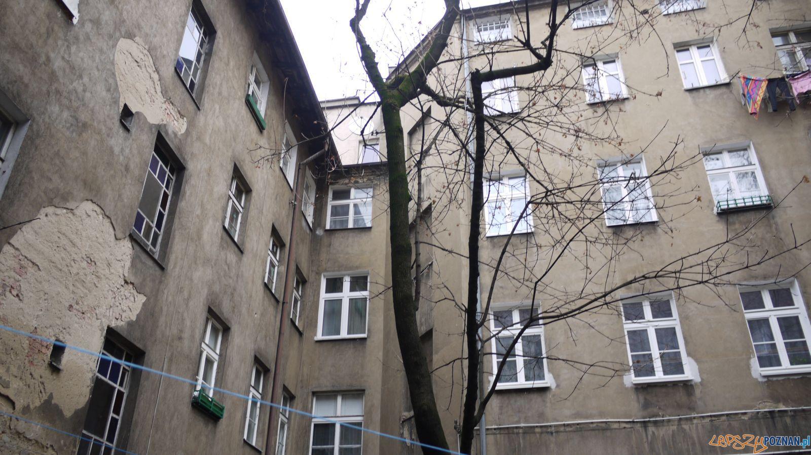 Remontowane kamienice ZKZL (2)  Foto: ZKZL