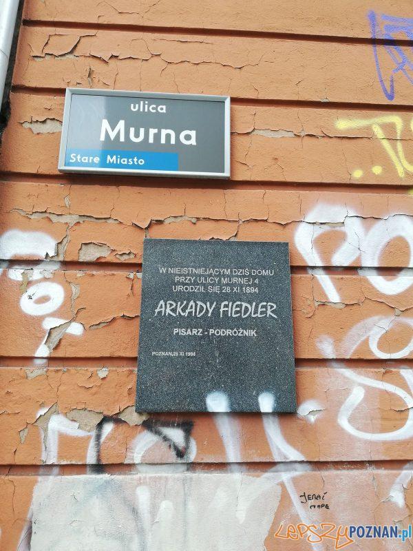 Murna, tablica pamiątkowa Arkadego Fiedlera Foto: Tomasz Dworek
