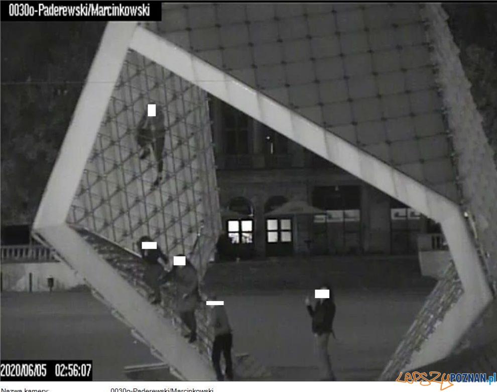Interwencje Straży Miejskiej (1)  Foto: Straż Miejska