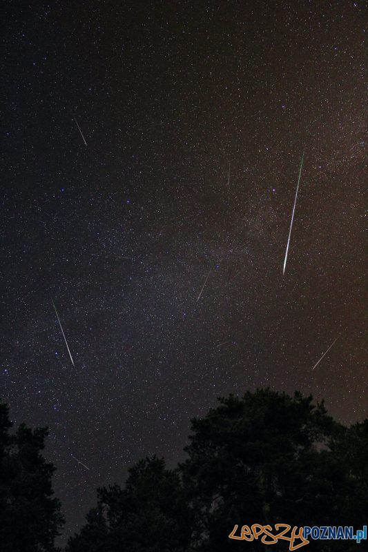 gwiazdy Foto: Prokhor Minin