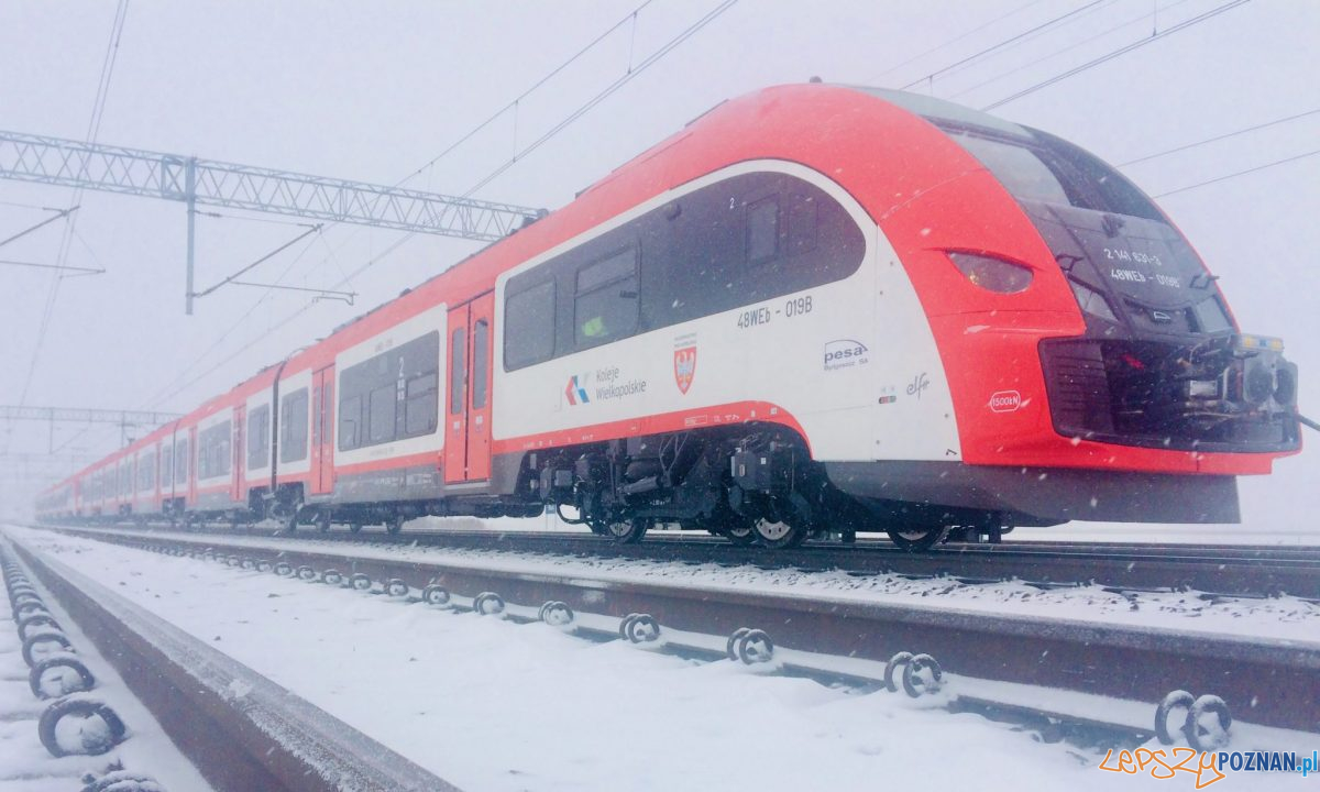Pesa Elf2 Koleje Wielkopolskie (3) Foto: Pesa / materiały prasowe Koleje Wielkopolskie