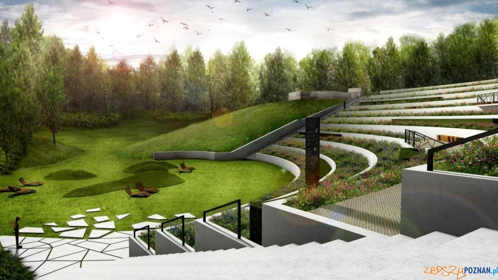 Miododjny ogród na Cytadeli  Foto: materiały praswe / UMP
