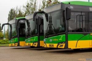 Nowe elektryczne autobusy  Foto: materiały prasowe / UMP