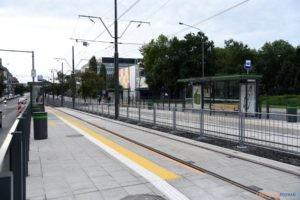 Krolowej Jadwigi tramwaj torowisko przystanek 2017_09_03 (21)  Foto: UMP / materiały prasowe